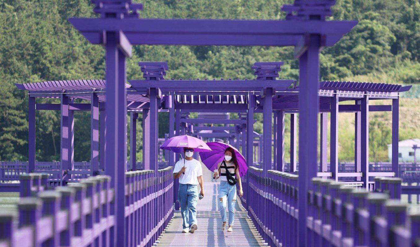 Banwol: фиолетовый остров в Южной Корее