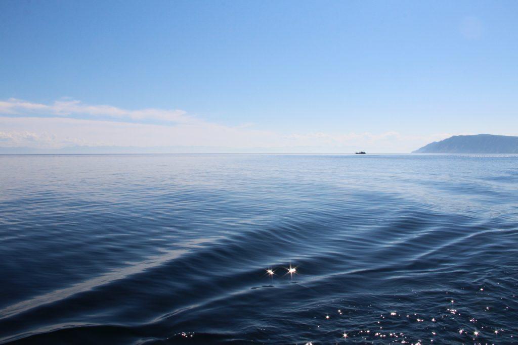 Четыре привитых иностранной вакциной спортсмена заболели COVID во время трансбайкальского заплыва