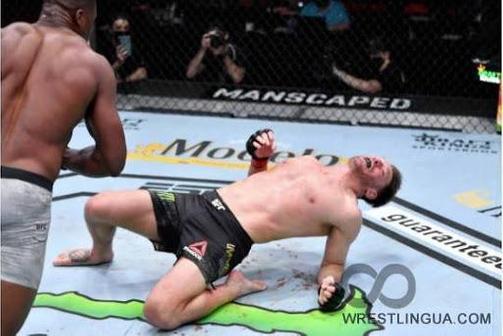 Фрэнсис Нганну — Стипе Миочич: результаты боя на UFC 260
