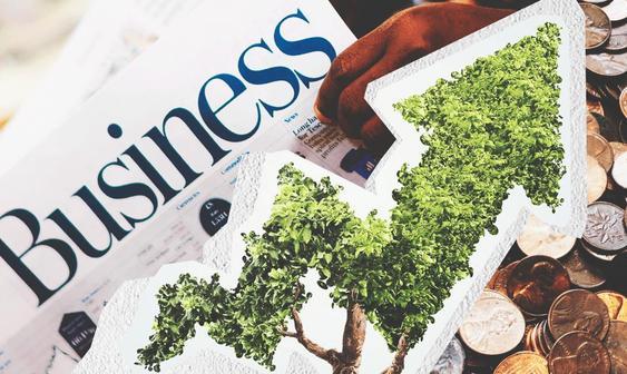 Импакт-бизнес — тренд новой экономики
