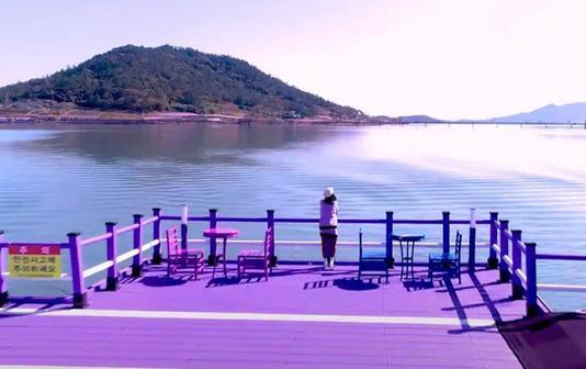 Фиолетовые острова в Южной Корее: горячая точка Instagram-туризма