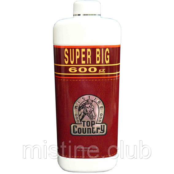 Ароматизированный тальк для мужчин Mistine Top Country Perfumed Talc