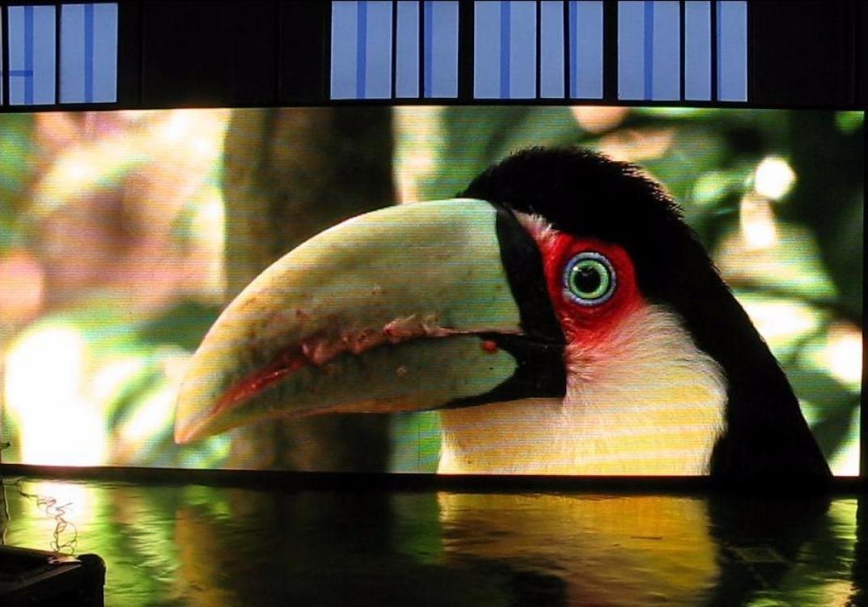 Светодиодный экран для помещения P4