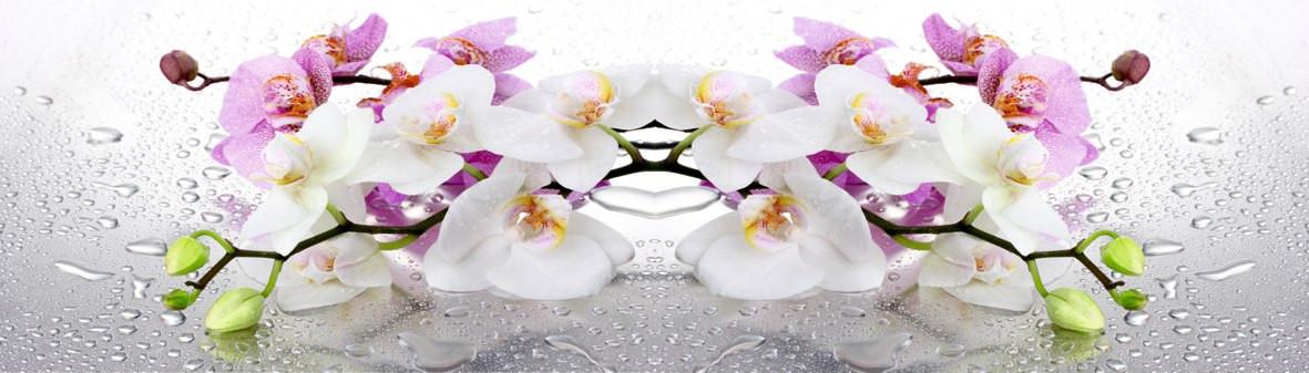 Цветы 2 33