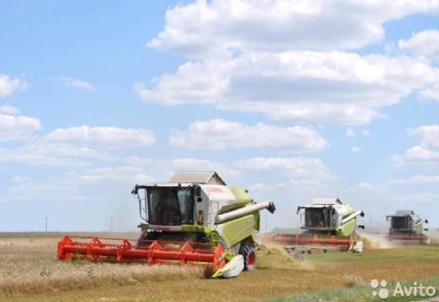 Предлагаем услуги по уборке с/х урожая