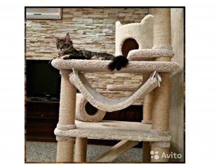 Комплекс-дом-когтеточка для кошек