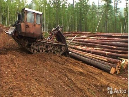 Услуги лесозаготовки дорого