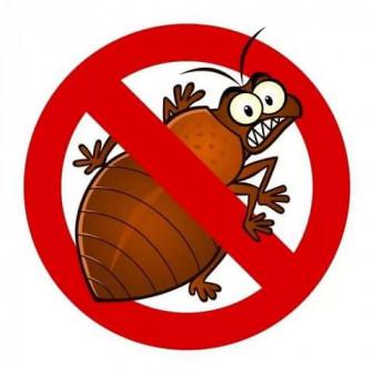 Уничтожения клопов тараканов муравьёв блох