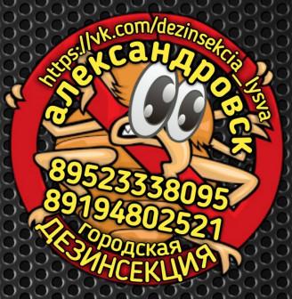 Александровск Дезинсекция Уничтожение насекомых Тел:89523338095; 89194802521