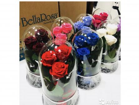 Розы в Колбе и комплектующие Оптом и розницу
