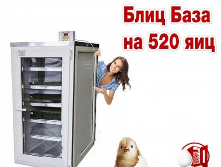 Инкубатор Блиц База 520 яиц