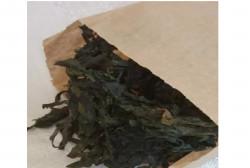 Морская капуста ламинария сублимированная 10 кг