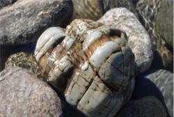 Натуральный камень валун Мигматит, 100-200 мм