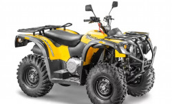 Stels ATV 500YS ST leopard