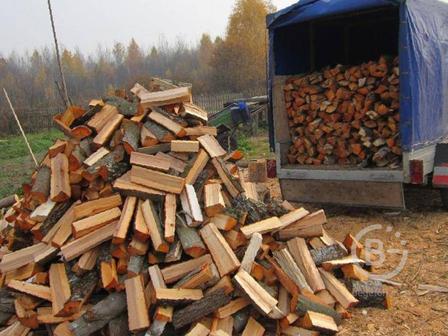 дрова колотые хвойный сухостой