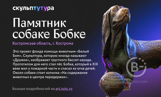 Памятник собаке Бобке занял второе место в четвертом раунде всероссийского конкурса