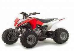 Квадроцикл sport ATV 250S