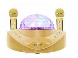 Беспроводная стерео караоке система Magic Karaoke SDRD SD-308 (Золотая)