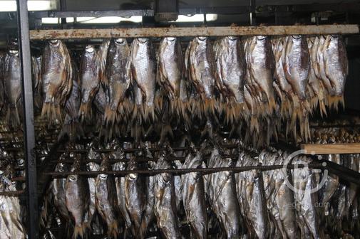 вяленая рыба Цимлянская