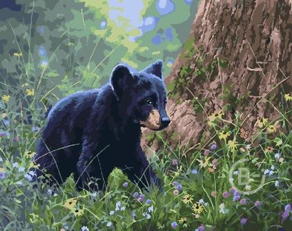 Набор для рисования по номерам Черный медвежонок