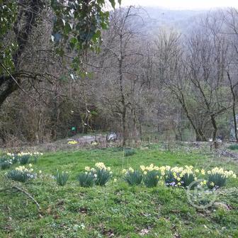 Земельный садовый участок