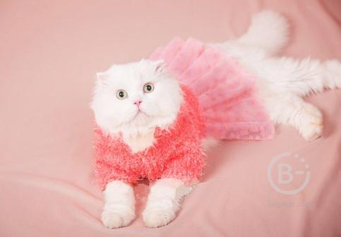 Теплое платье Pink Dog