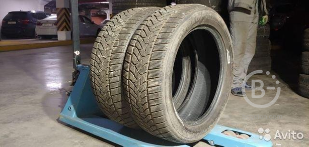 Шины 255 50 19 Dunlop Winter Sport 5 SUV 107V