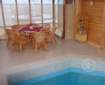 Уютная финская сауна с бассейном