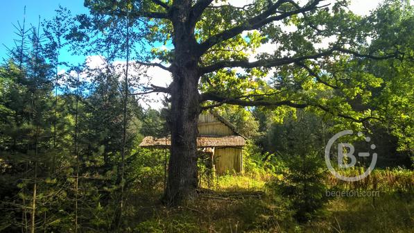 Участок 15 соток на лесной опушке, возможно расширение