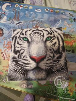 Картина:Тигр