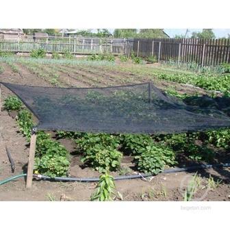 Сетка затеняющая для сада и теплиц