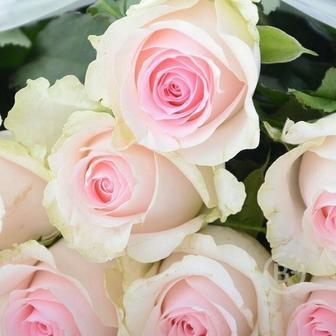 Букет роз Sweet 70см