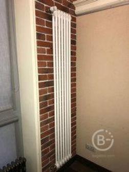 Вертикальный радиатор Arbonia 2180/04 N12 3/4