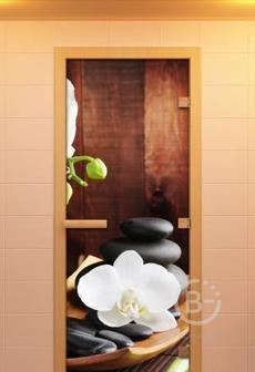 Эффектные деревянные и стеклянные двери для бань и саун в Барнауле