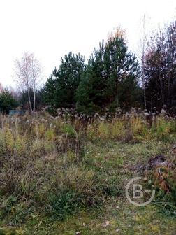 Продам земельный участок общей площадью 24,28 сот. Чеховский район,  Плешкино. Газ.