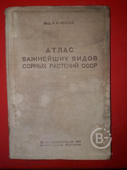Мальцев А.И.  Атлас важнейших видов сорных растений СССР. 1-й том.