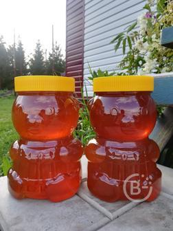 Натуральный мед. Урожай 2021