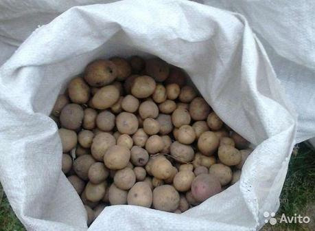 Мелкий картофель для скота