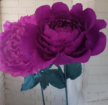 Цветок Гигант (ростовой цветок)