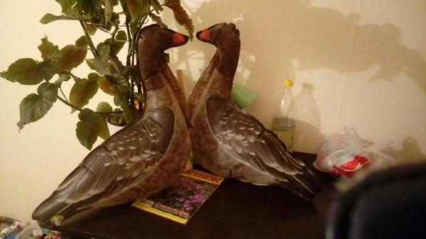 муляж надувных гусей