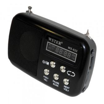 Мультимедиа центр WS 822 черный (FM радио, встаккум, LCD, читает с USB и Micro SD карты, AUX)