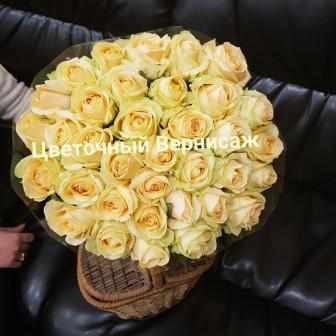роза россия 60 см