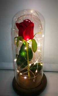 Волшебные Розы в колбе