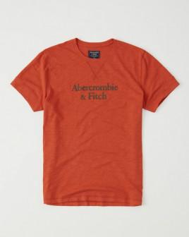 Футболка Abercrombie  Fitch мужская