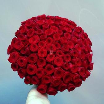 Букет из 101 крупных эквадорских роз