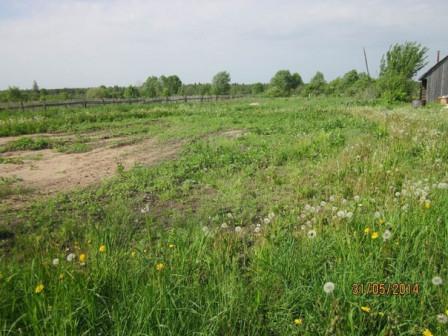 Земельный участок, д. Троицкое