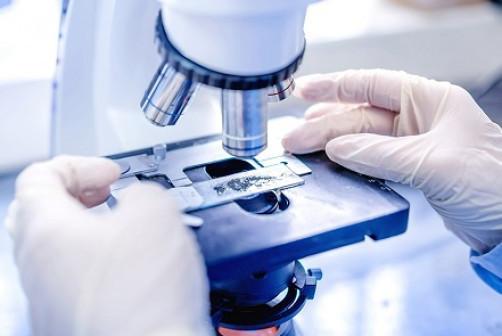 Лабораторное обследование обоих супругов перед ЭКО
