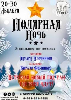 """Шоу-программа """"Полярная ночь"""""""