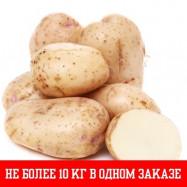 Картофель, цена за 1 кг 26.40 руб