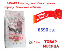 Товар месяца. SAVARRA корм для собак крупных пород